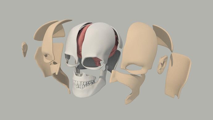 head3.jpg