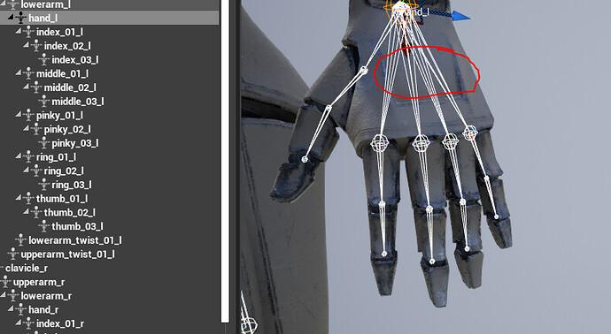 source skeleton.PNG.jpg