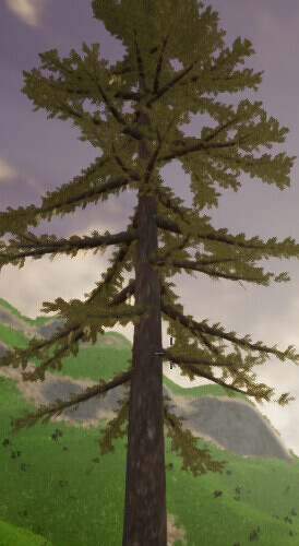 tree.PNG.jpg