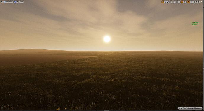 towards sun.jpg