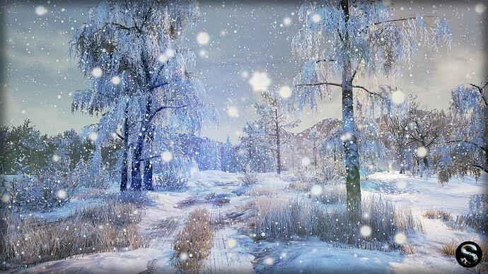 Winter_Nature01.jpg