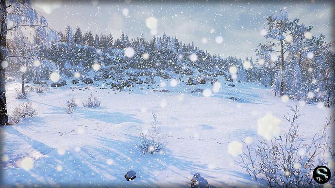 Winter_Nature07.jpg