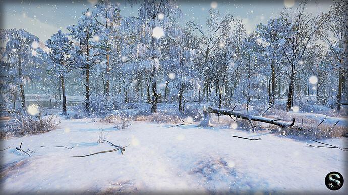 Winter_Nature06.jpg