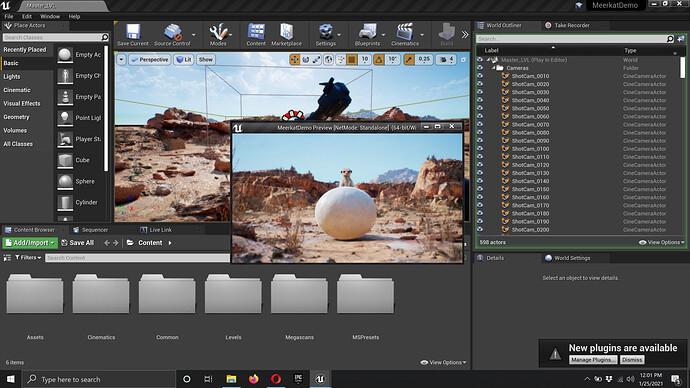 Screenshot 2021-01-25 12.01.24.jpg