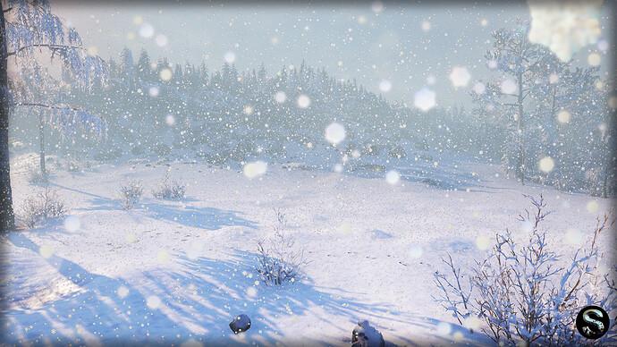 Winter_Nature09.jpg