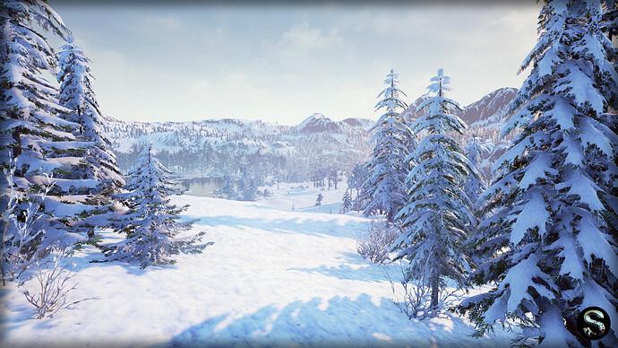 Winter_Nature03.jpg