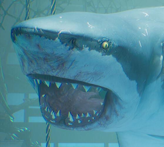 SharkSmile.jpg