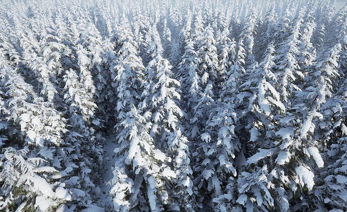 NaturePack_Winter06.jpg