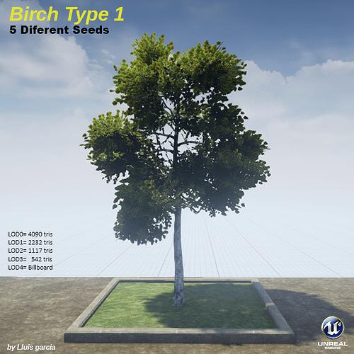 BirchType1.png