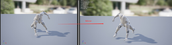MirrorAnim