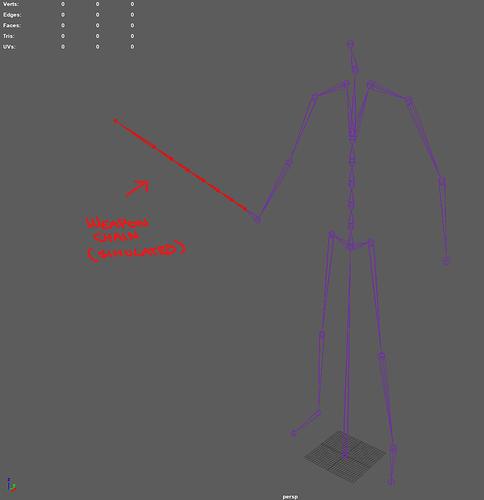 skeleton_hierarchy_example