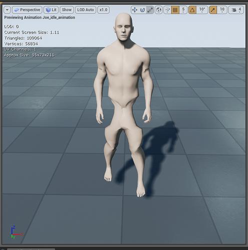 AnimationDeformation (1).PNG