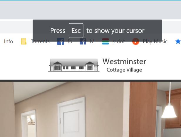 ESC-cursor.PNG