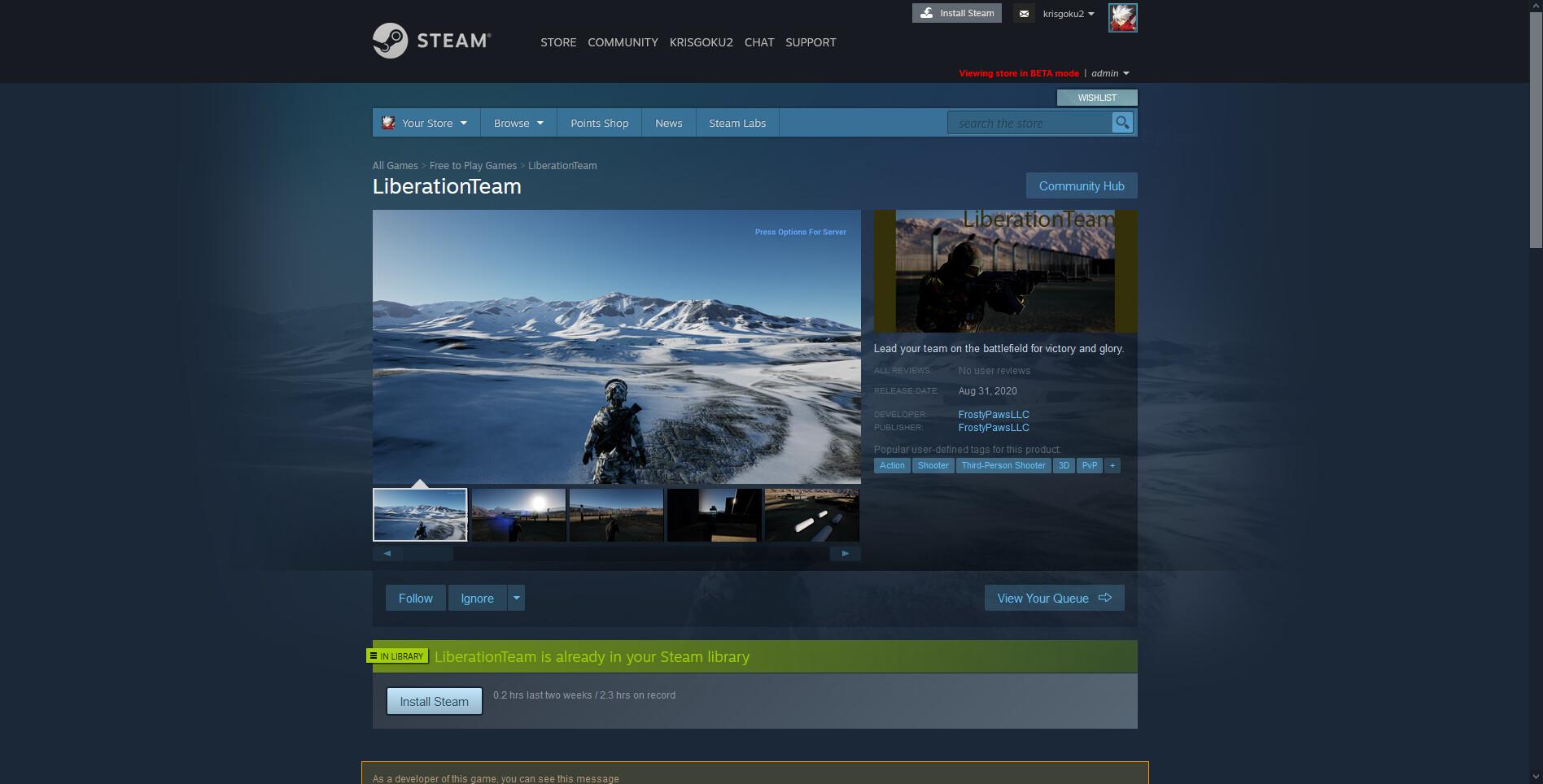 LiberationTeam on Steam - Mozilla Firefox 8_17_2020 2_26_22 PM.jpg