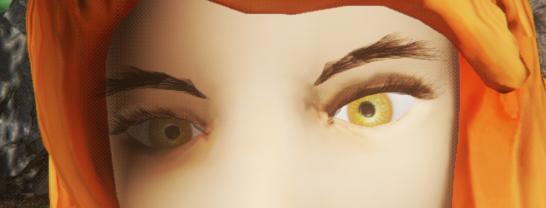 eyelash_ok.PNG